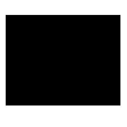 palm-script-logo-filled-black.png